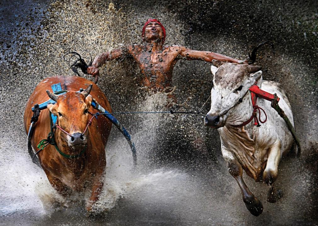 20120212_Bull_race_s